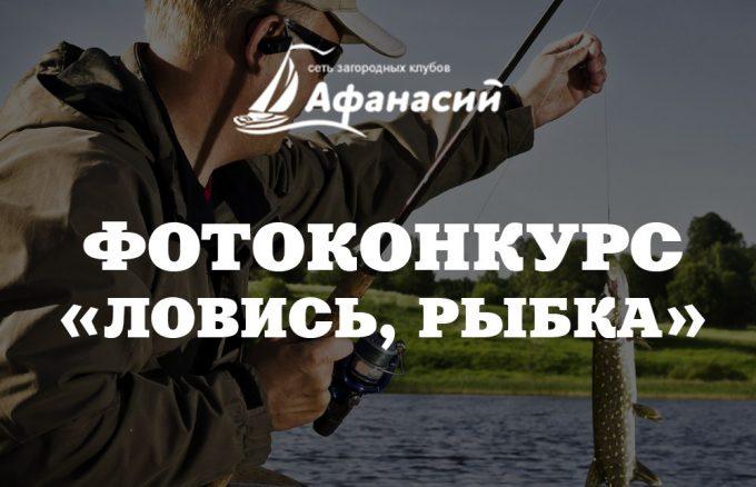 Внимание! Фотоконкурс «Ловись, рыбка»